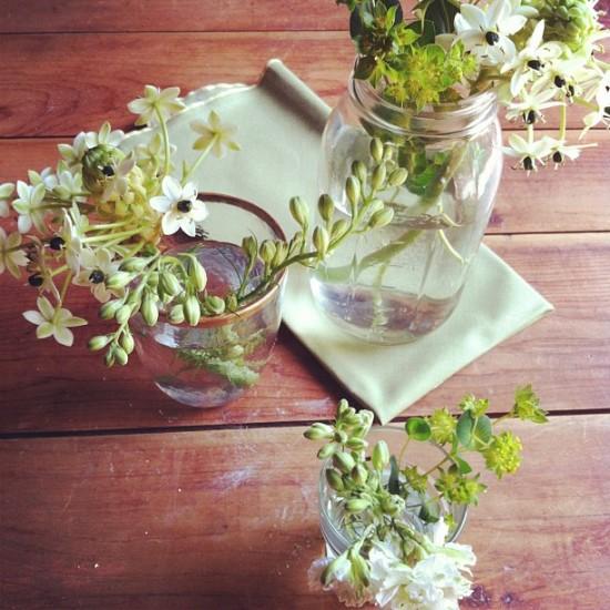 michellesmith_flowers