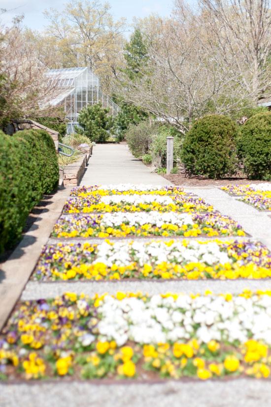 The North Carolina Arboretum, Photo by Michelle Smith