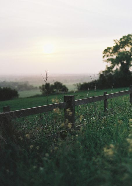 Picture of a field