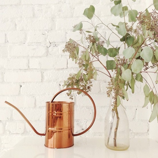 Copper Watering Can, Instagram by DesignLoveFest